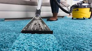 Rugs and Mat Cleaning